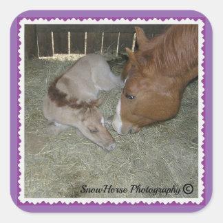 Mare & Foal Square Sticker