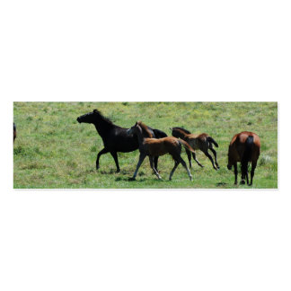 """Mare & Foals Running"" BookMark Business Card Template"