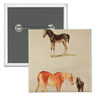 Mares and foals 15 cm square badge