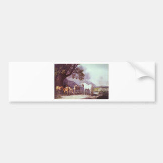 Mares and Foals in a Mountainous Landscape Bumper Sticker