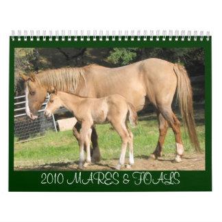 Mares & Foals - 2010 Calendar