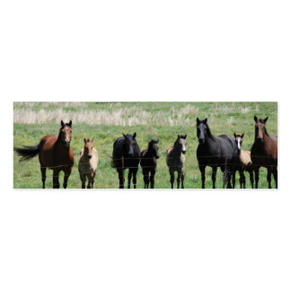 """Mares & Foals"" Bookmark Business Card Template"