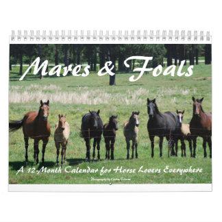 Mares & Foals Calendar
