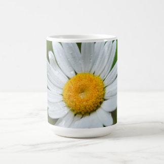 Marguerite-wild-flower426 WILDFLOWERS DAISY  SPRIN Coffee Mug