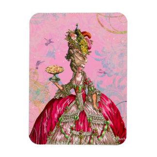 Marie Antoinette & Hummingbirds in Pink Magnet