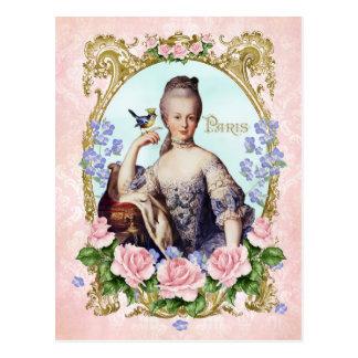 Marie Antoinette Pink Damask Antonia Rose Postcard