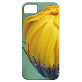 marigold case for the iPhone 5