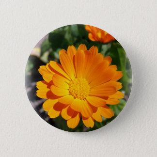 marigold flower 6 cm round badge