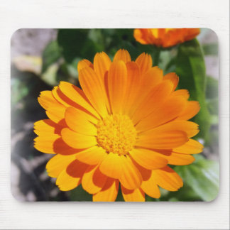 marigold flower mouse pad