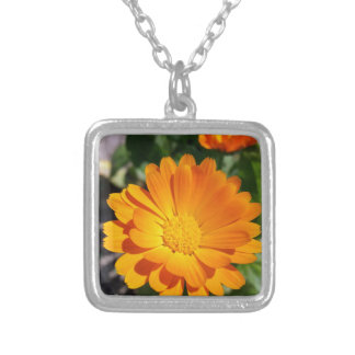 marigold flower silver plated necklace