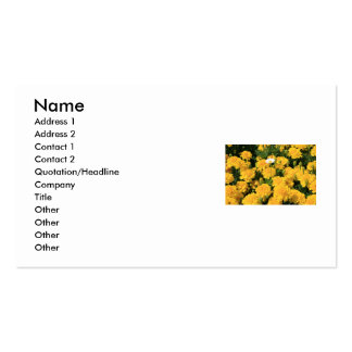 Marigold Flowers and a Daisy Flower Business Card
