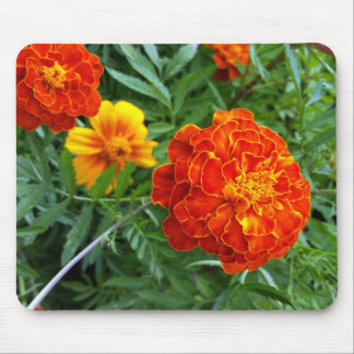 marigold in the sun mouse pad