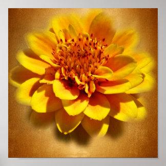 Marigold Joy Poster