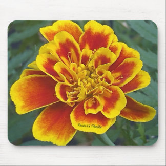 Marigold Mouse Pad