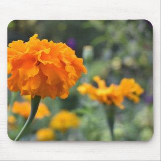 Marigold Orange Flower Nature Photography Garden Mouse Pad