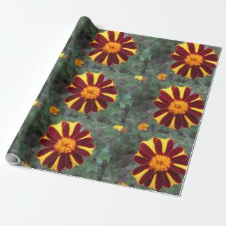 Marigold Velvet Rich Red Yellow Flower