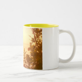 marine collection. Greece. Kefalonia Two-Tone Coffee Mug
