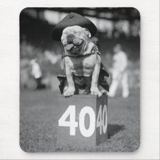 Marine Corps Mascot, 1920s Mouse Pad