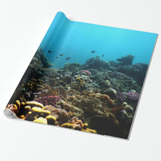 Marine Environment in the Pacific Wrapping Paper