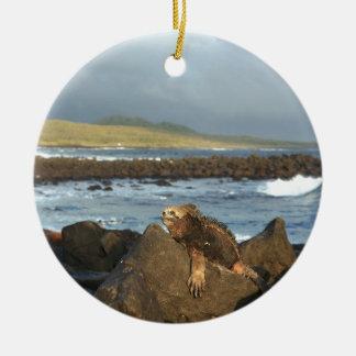 Marine iguana relaxing Galapagos Islands coastline Ceramic Ornament