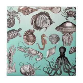 Marine Life Ceramic Tile