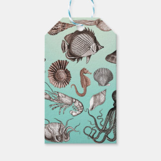 Marine Life Gift Tags