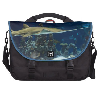 Marine Life Print Commuter Bag