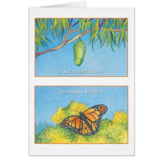 Mariposa Monarca, tarjeta Card