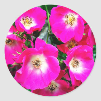 Marjorie Fair Classic Round Sticker