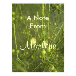 Marlene Postcard