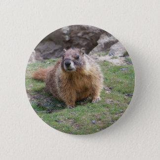 Marmot 6 Cm Round Badge