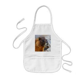 marmot kids apron