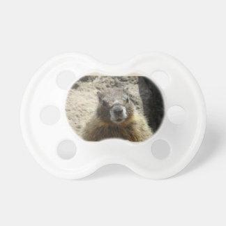 Marmot Pacifier