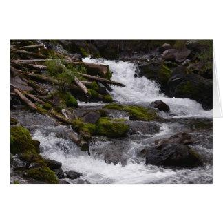 Maroon Creek Card