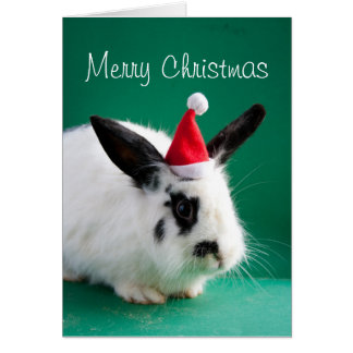 Marry Christmas Rabbit Card