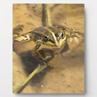 Marsh Frog Plaque
