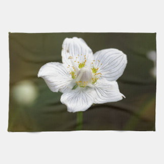 Marsh grass of Parnassus (Parnassia palustris) Hand Towel