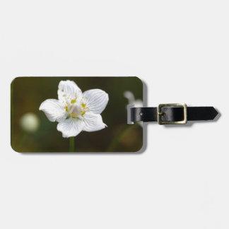 Marsh grass of Parnassus (Parnassia palustris) Luggage Tag