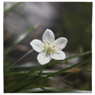 Marsh grass of Parnassus (Parnassia palustris) Napkin