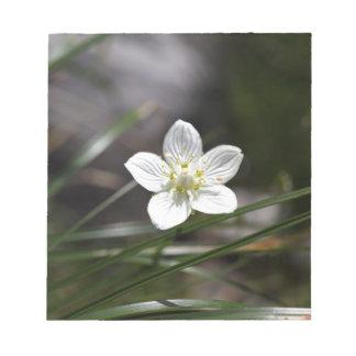 Marsh grass of Parnassus (Parnassia palustris) Notepad