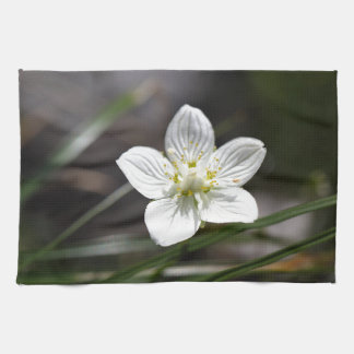 Marsh grass of Parnassus (Parnassia palustris) Tea Towel