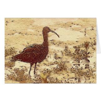 Marsh Ibis Blank Card