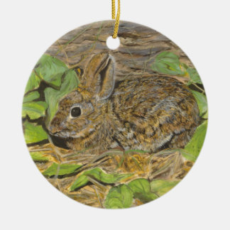 Marsh  Rabbit ornament
