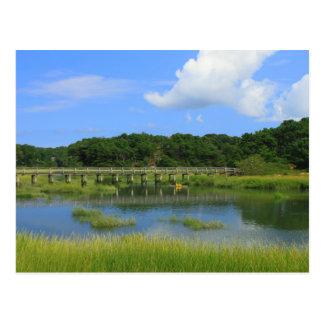 Marshes and Uncle Tim's Bridge, Wellfleet MA Postcard
