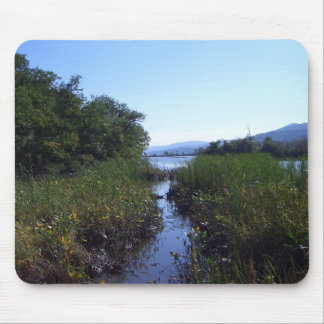 Marshland in New York Mouse Pad
