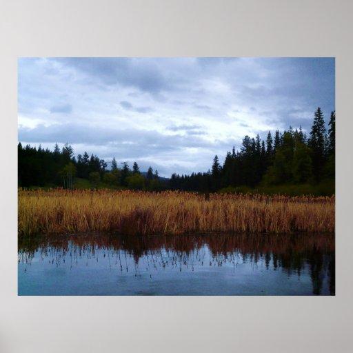 Marshy Wetland Area at the Lake Print