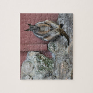 marsupial sitting against wall by rock puzzle