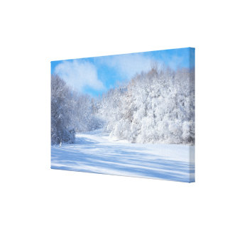 Marthaler Park Snowy Hills Canvas Print