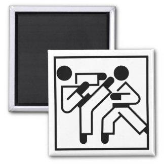 Martial Arts Figures Magnet