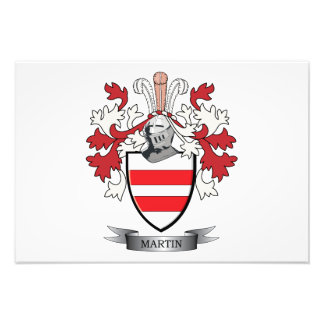 Martin Coat of Arms Art Photo